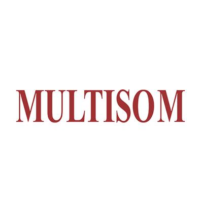 Logo Multisom